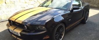 American Mustang Import