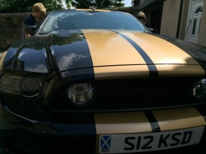 quality repair to graphics on a much loved mustang.